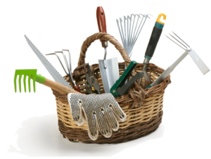 garden_basket