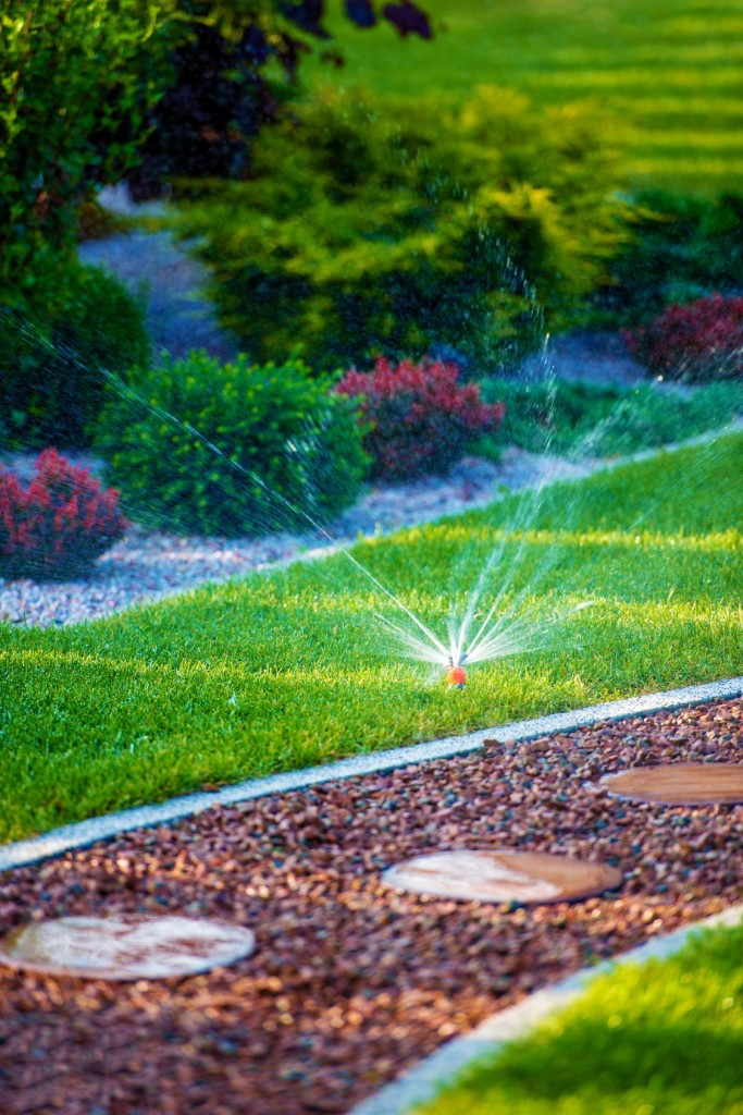 Backyard Garden Automatic Watering System. Beautiful Newly Designed Backyard Garden.