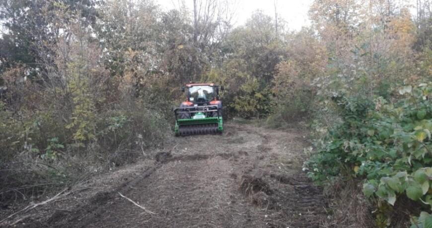 Mulczowanie terenu Bielsko Biała